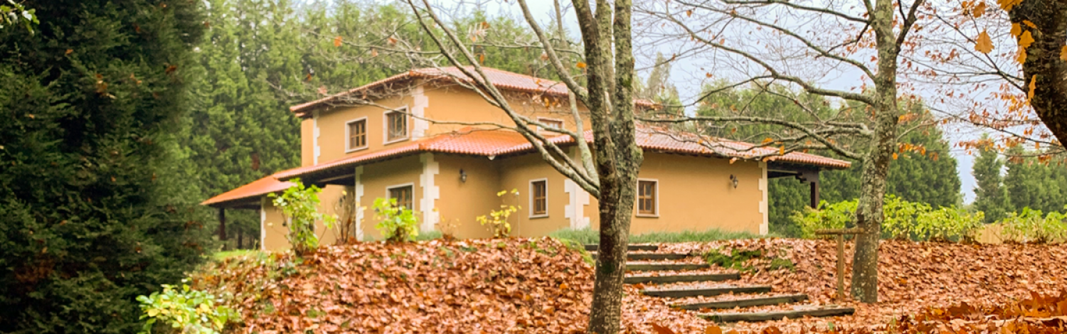 We admit it: at Vila sen Vento we love autumn. The season's ochre shades make this one of the best times to get away for a break in our small Galician paradise, a rural complex located on an impressive estate surrounded by nature, featuring little cabins in the midst of trees, villas for groups, a rural tourism house, a restaurant and more than 40,000 square metres of grounds.