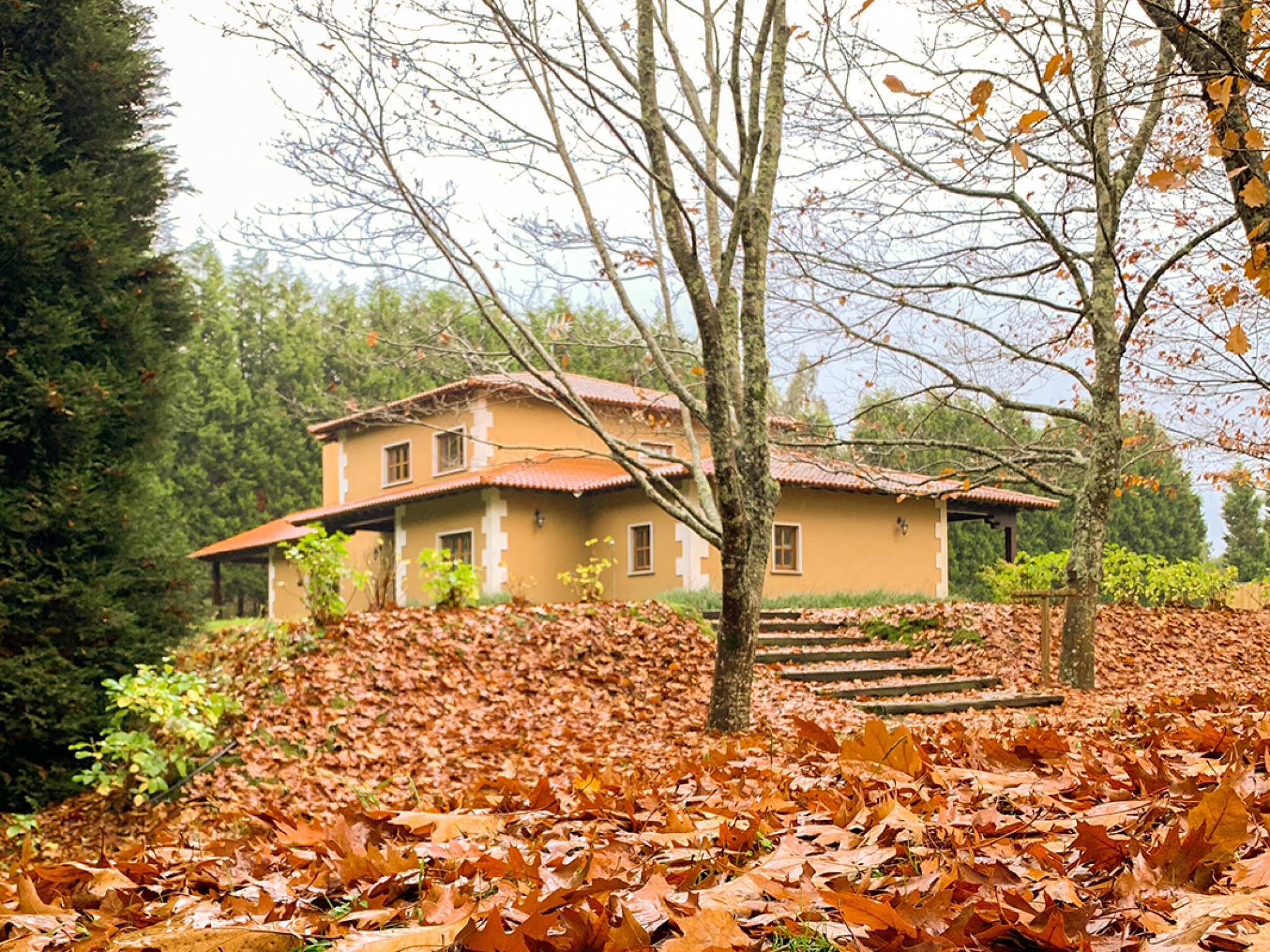 Our small Galician paradise turns brown: welcome autumn to Vila sen Vento!